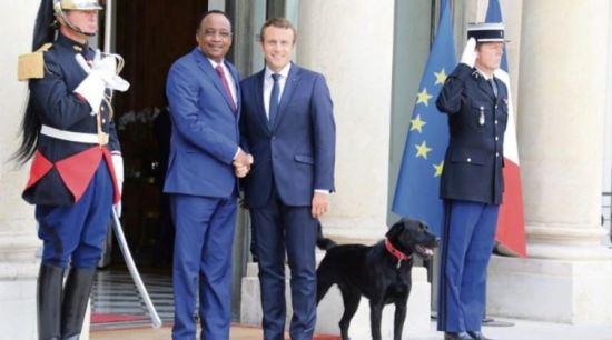 macron chien afrique